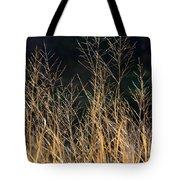 Tall Fall Grasses Tote Bag