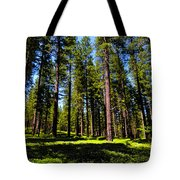 Tall Forest Tote Bag