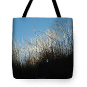 Tall Grass And Sunlight Tote Bag