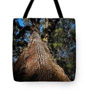 Tall Oak Tote Bag