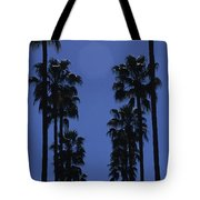 Tall Palm Trees In A Row Tote Bag
