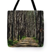 Tall Pine Lined Path Tote Bag