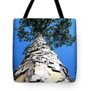 Tall Pine Tree In Summer Tote Bag