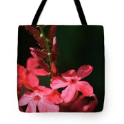 Tall Red Star Tote Bag