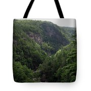 Tallulah Gorge 12 Tote Bag