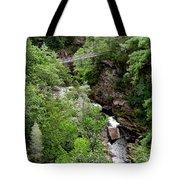 Tallulah Gorge 9 Tote Bag