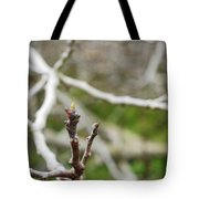 Talon Branch Tote Bag