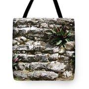 Talum Ruins Plant Life Tote Bag