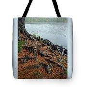 Tamarack Needles Tote Bag