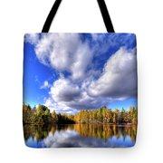Tamarack Reflections In The Adirondacks Tote Bag