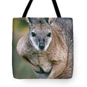 Tamma Wallaby Tote Bag