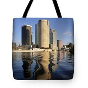 Tampa Florida 2010 Tote Bag