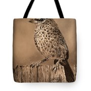 Tanager Finch Tote Bag