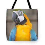 Tanganyika 0087 Tote Bag