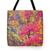 Tangerine Tree Tote Bag