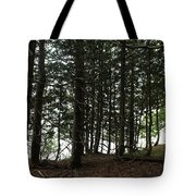 Tangled Trees Tote Bag
