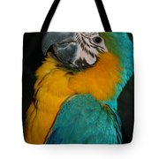 Tango, The Blue And Gold Macaw Tote Bag