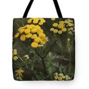 Tansy Blossoms Tote Bag