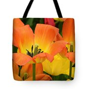 Tantalizing Tulips Tote Bag