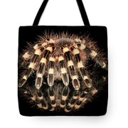 Tarantula Reflection Tote Bag
