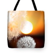 Taraxacum Sunset Tote Bag