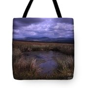 Tarn On The Slopes Of Whernside With Pen-y-ghent On The Horizon Yorkshire Dales England Tote Bag
