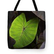 Taro Hoomaluhia 2 Tote Bag