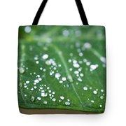 Taro Leaf Tote Bag