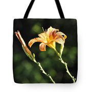 Tasmania Day Lily Tote Bag