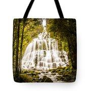 Tasmanian Waterfalls Tote Bag