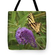 Tattered Tiger Swallowtail Butterfly          August         Indiana Tote Bag