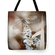 Tattered Wings B1 Tote Bag