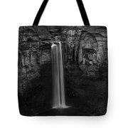 Taughannock Falls Late November Tote Bag