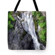 Taughannock Falls Upper Rim Trail Tote Bag by Christina Rollo