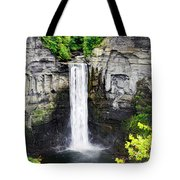 Taughannock Falls View From The Top Tote Bag