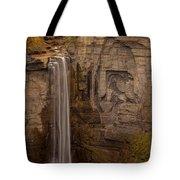 Taughannock Ten Tote Bag