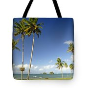 Taveuni Shoreline Tote Bag
