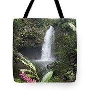Taveuni, Tavoro Waterfall Tote Bag