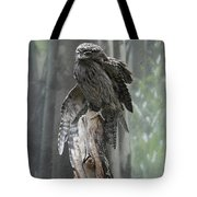 Tawny Frogmouth With It's Eyes Closed And Wing Extended Tote Bag