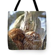 Tawny Owls In Love Tote Bag