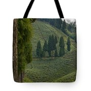 Tea Garden In Darjeeling Tote Bag