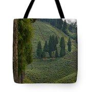 Tea Garden In Darjeeling Tote Bag by Atul Daimari