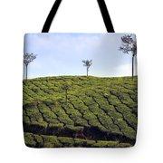 Tea Planation In Kerala - India Tote Bag