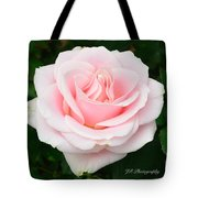 Tea Rose In Pink Tote Bag