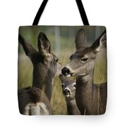 Teach Your Children Well Tote Bag