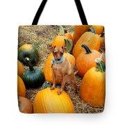 Teagun Rose Pumpkin Patch 3 Tote Bag
