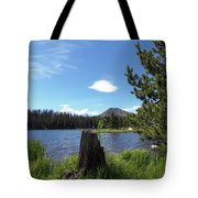 Teapot Lake Tote Bag