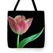 Teardrop Tulip Tote Bag by Tracy Hall