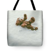 Teddy Bear In Snow Tote Bag