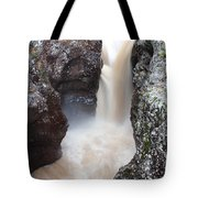 Temperance River State Park Four Tote Bag
